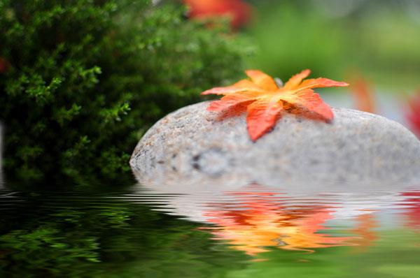 Conseil de Budama – Respirez plus profondément