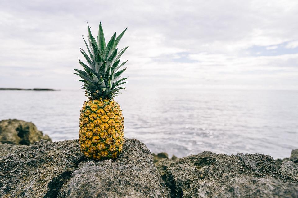 ananas-image-du-domaine-public