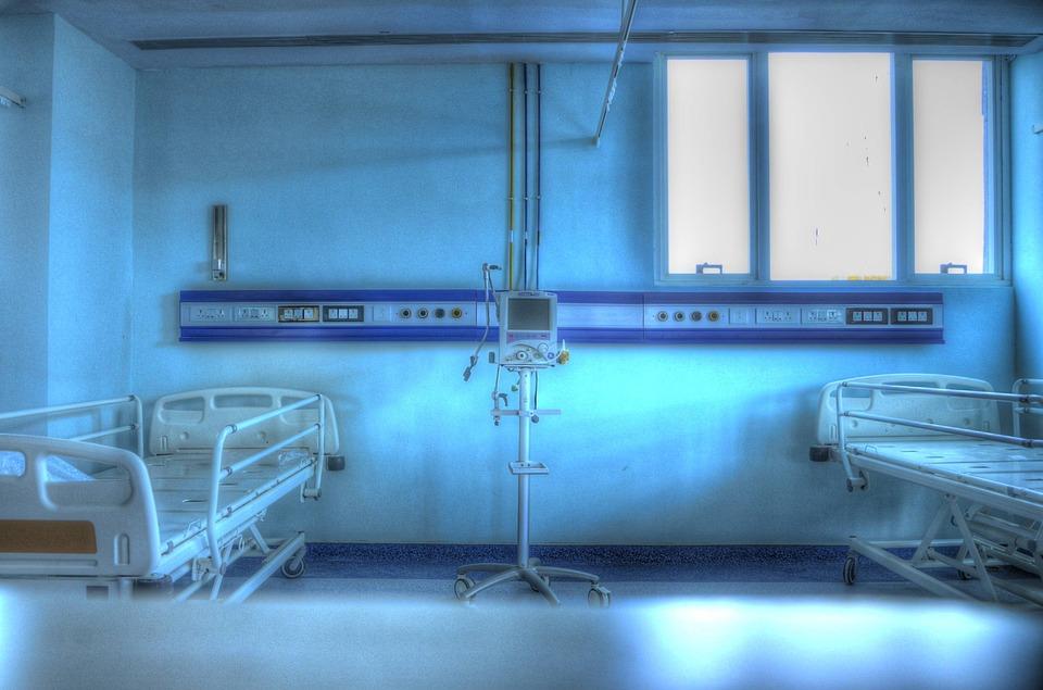 don organes. image domaine public